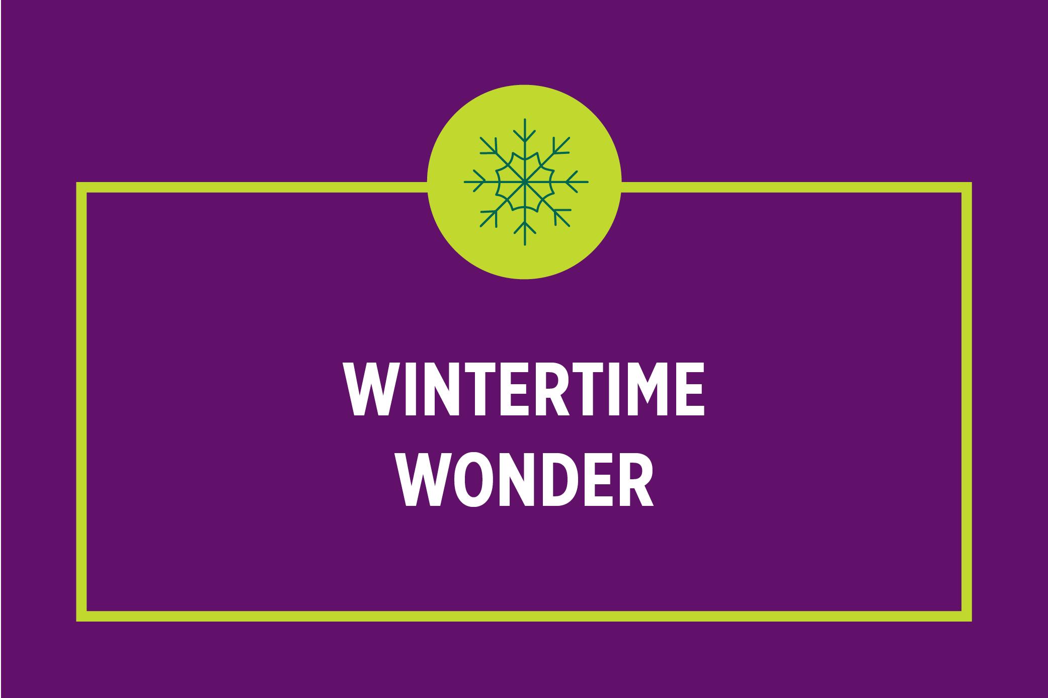Wintertime Wonder